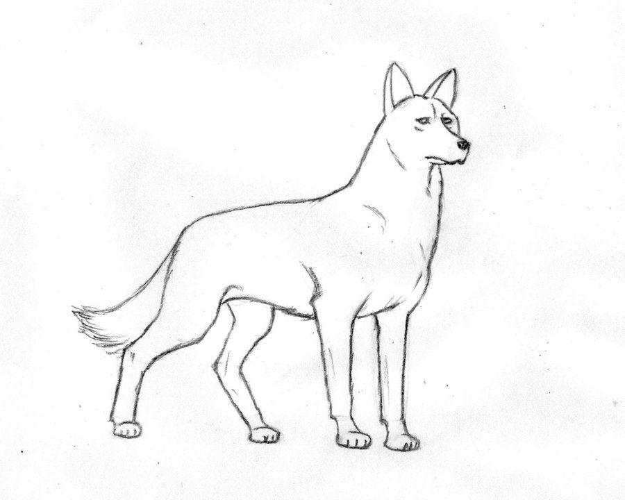 Как нарисовать собаку на Новый год