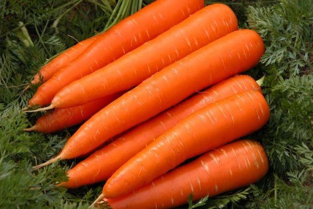 Photo of Посадка моркови по лунному календарю на 2021 год